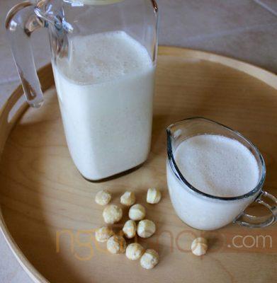 Tự Làm Sữa Từ Hạt Mắc Ca Thơm Ngon Tại Nhà 5