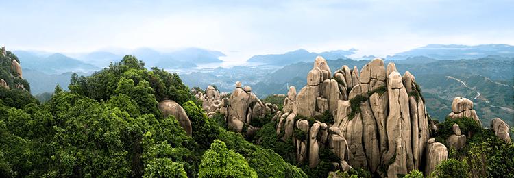 núi Fuding Taishan nơi sản xuất trà trắng phúc đỉnh