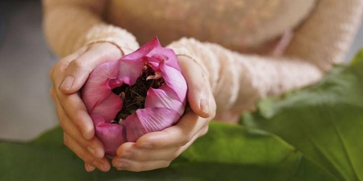 văn hóa trà và nghệ thuật thưởng trà của người việt