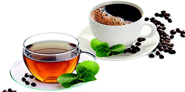 Lượng caffeine có trong trà cao hơn nhiều hàm lượng có trong hạt cafe