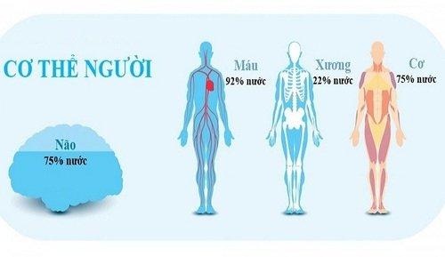 Uống nước đúng cách như thế nào để tốt cho sức khỏe? 1