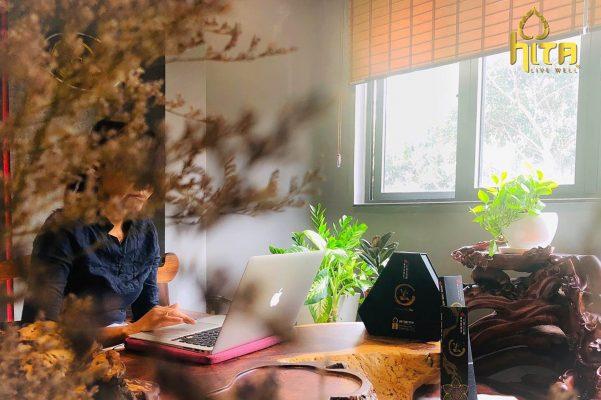 Nhang Thuốc Bắc - Nhang Thiền Vô Ưu hương thơm nồng ấm và thanh khiết 1